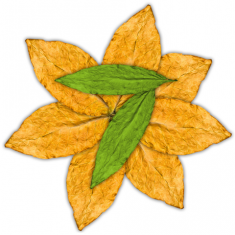 Flavour Flavourart 7 LEAVES