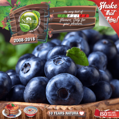 Natura Special Mix  60/100ml Forest Blueberries